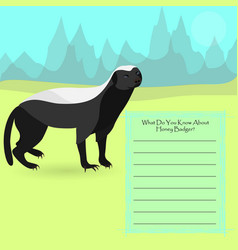 african honey badger vector image
