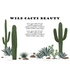 Background with cactuses and succulents set vector
