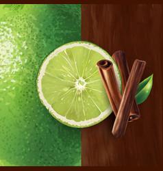 Cinnamon and lime vector