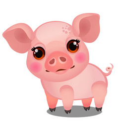 little animated pig isolated on white background vector image
