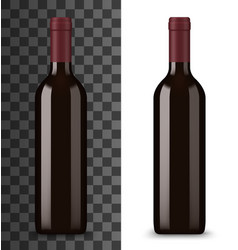 red wine in glass bottle isolated winery drink vector image