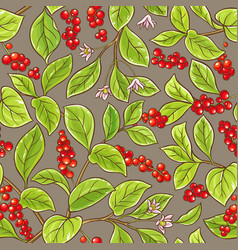 Schisandra pattern vector