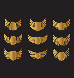 set golden wings widh shield vector image