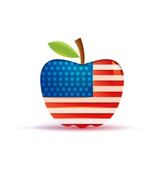 the USA flag in a big apple vector image