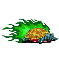Tortoises with green flames vector