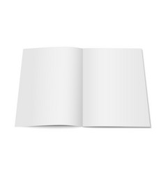 white mock up magazine isolated vector image