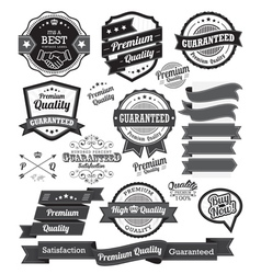 Set of vintage badges and design elements vector image vector image