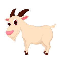goat cartoon vector image