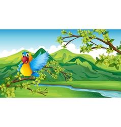 Cartoon Parrot Landscape vector image vector image