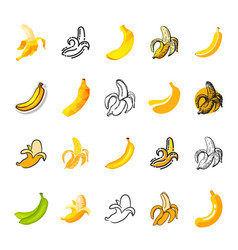 banana yellow tropical fruit icon or vector image