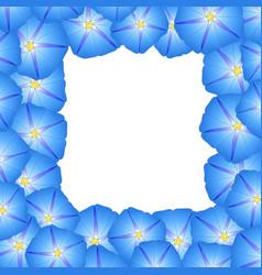 Blue morning glory flower border vector