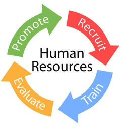 Human resources cycle vector