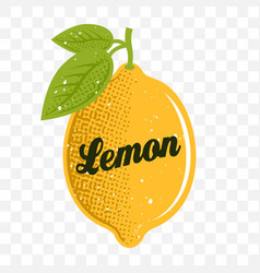 lemon with text on transparent background vector image