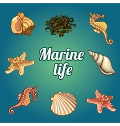 Set of seven shells and sea inhabitants vector image