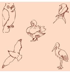 Birds Pencil sketch by hand Vintage colors vector image vector image