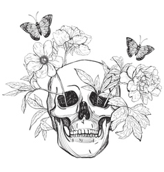 Skull flowers and butterfly vector image