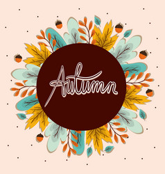 Autumn leaves and acorns around circle vector