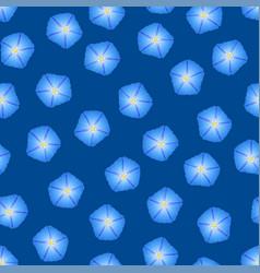 Blue morning glory flower on indigo blue vector