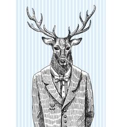 Deer in jacket vector image