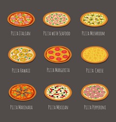 Delicious pizza icons pepperoni margherita and vector