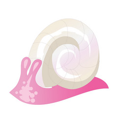 flat style of pink snail icon vector image