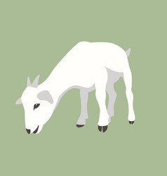 goat flat style front side vector image