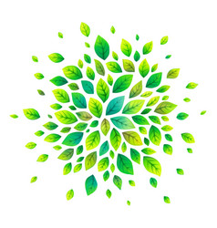 green cartoon style leaves splash vector image