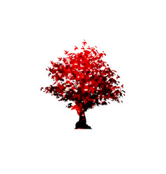 red maple tree icon isolated on white vector image