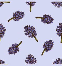 seamless pattern with hand drawn colored hyacinth vector image