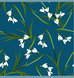 white snowdrop flower on indigo blue background vector image