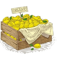 Wooden Box with Ripe Yellow Lemons vector