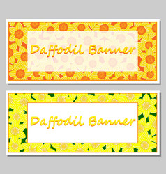 daffodil banner template vector image