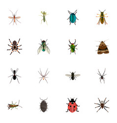 Realistic tarantula ant locust and other vector