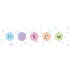 5 simplicity icons vector