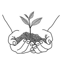 Doodles of hands holding seedling design vector