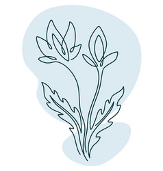 flower with flourishing stem and petals vector image