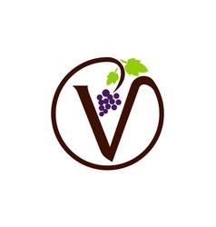letter v grape modern vector image