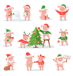 Pig in christmas hat as symbol of new year 2019 vector
