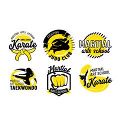 Set icons for martial arts school banners vector