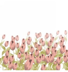 Tulips flower composition vector
