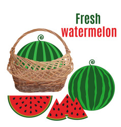 Wicker basket with watermelon flat vector