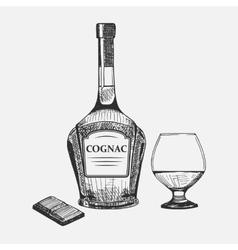 Hand drawn set of cognac elements vector image