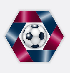 Blue - pomegranate hexahedron with football ball vector