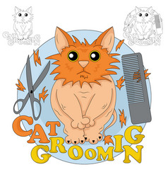 Cat grooming vector