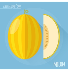 Honey melon icon vector