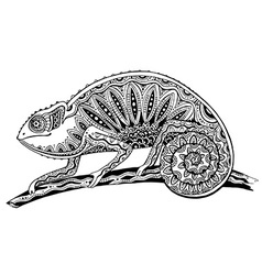 Picture of black and white chameleon lizard in vector