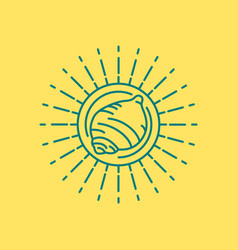 Summer beach sea shell icon design in line art vector