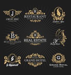 vintage royal heraldic monogram and frame logo vector image