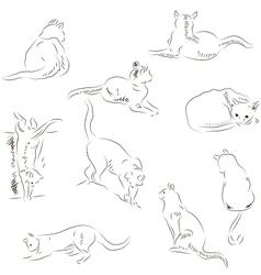 Cats sketches set vector image