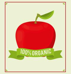 apple food 100 organic nutrition vector image